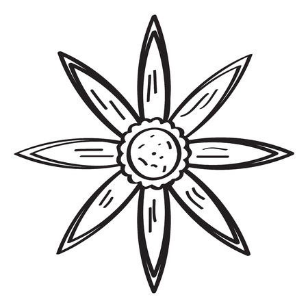 The drawing of a flower