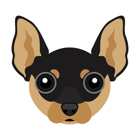 Cute chihuahua dog avatar isolated on light background.