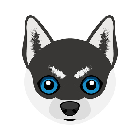 Cute Siberian Husky dog avatar