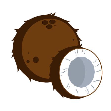 Isolated coconut fruit image. Vector illustration design 向量圖像