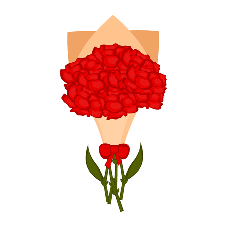 Isolated bouquet of carnation flowers. Vector illustration design