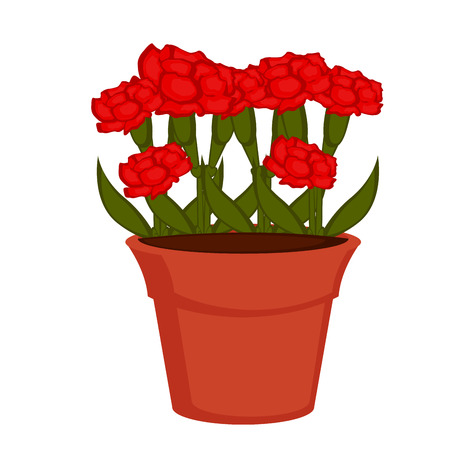 Isolated pot with carnation flowers. Vector illustration design Illustration