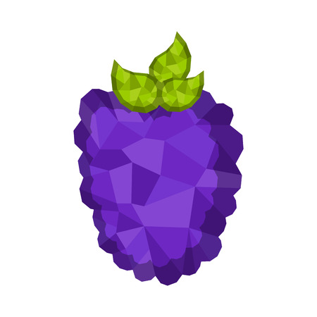 Isolated geometric blackberry. Low Poly. Vector illustration design