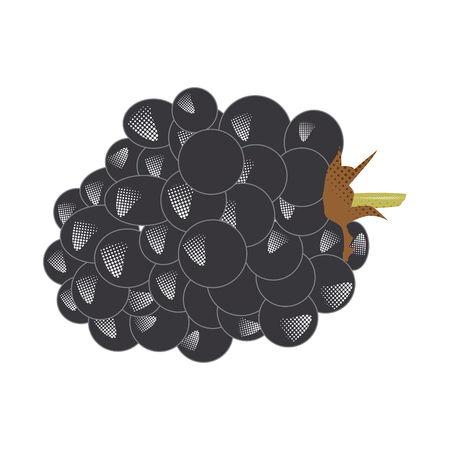 Isolated blackberry. Halftone style. Vector illustration design Illustration