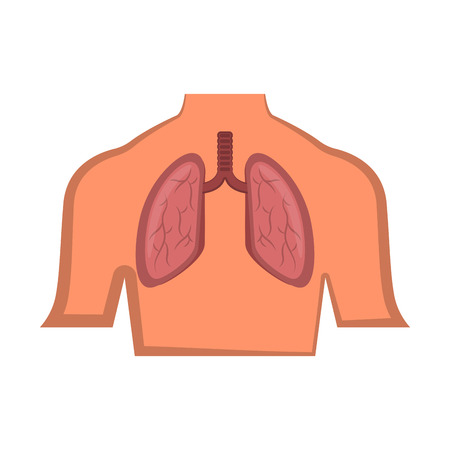 Isolated human lung in a body. Vector illustration design Stock Illustratie