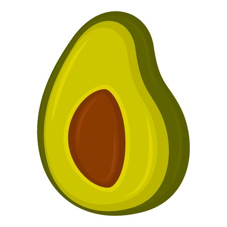 Isolated avocado cut on a white background - Vector