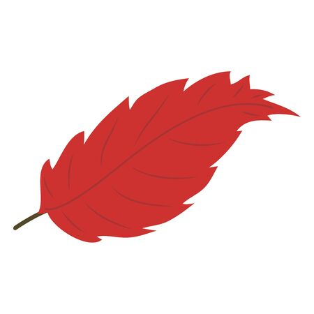 Isolated  autumn leaf on white Иллюстрация