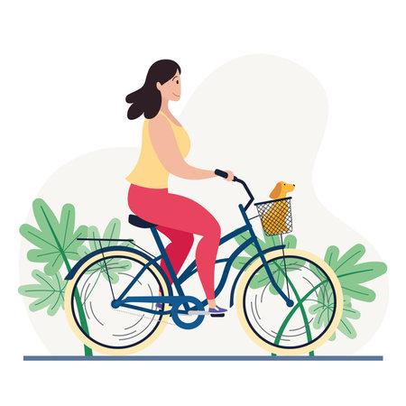 Woman riding a classic bicycle with a dog in a basket Illusztráció