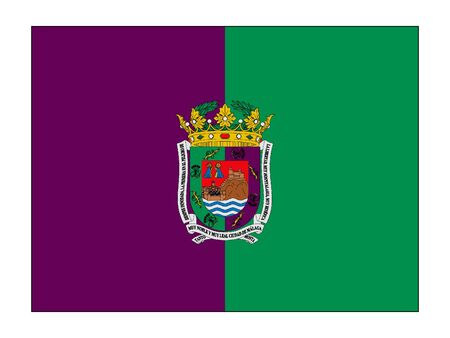 Flag of the Spanish City of Malaga