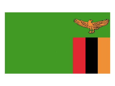 Flat Flag of Zambia