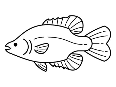 Simple Hand Drawn Outline Silhouette Illustration of a Fish