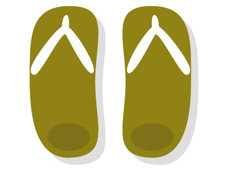 Simple 3D Illustration of Summer Slippers