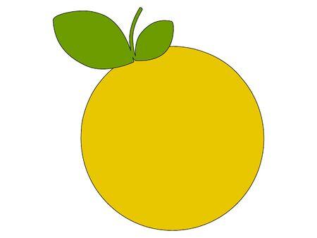 Simplified Silhouette of a Grapefruit Çizim