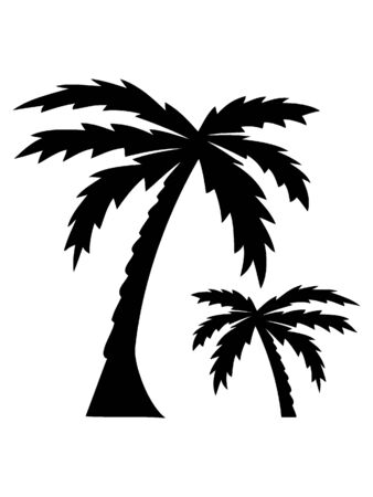Black and White Silhouette of a Palm Tree