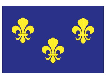 Royal Banner During the Reign of the Valois Dynasty
