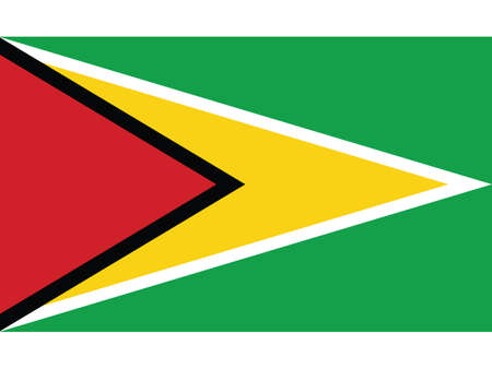 Vector Illustration of the National Flag of the Co-operative Republic of Guyana