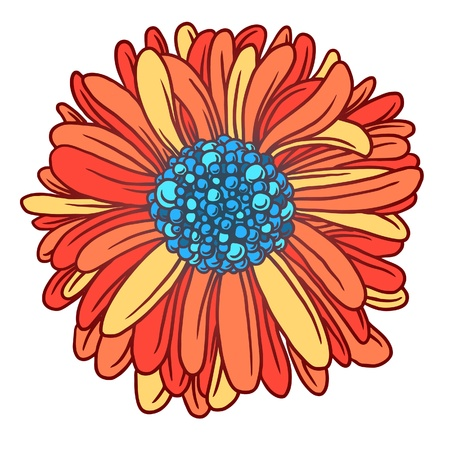 Background of colorful beautiful flowers gerber  Beautiful red Gerber Daisy   Vector