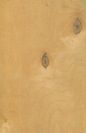 convivialit�: raster fond en bois texture en bois contreplaqu� mat�riaux de construction respectueux de l'environnement naturel et photo