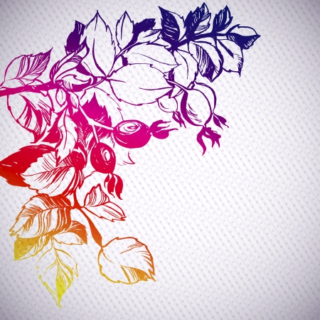 wild rose plant rainbow background illustration  the leaves are painted with ink and brush  decorative dots and stripes Vector