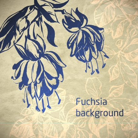 fuchsia: ornamental flower flower card  illustration drawn with ink and brush  texture of paper and blots  place for your text Illustration