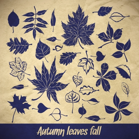 vector collection beautiful brushstroke autumn leaves on paper background Vector