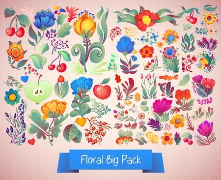 elegância: Elegância flor grande pacote Ilustração