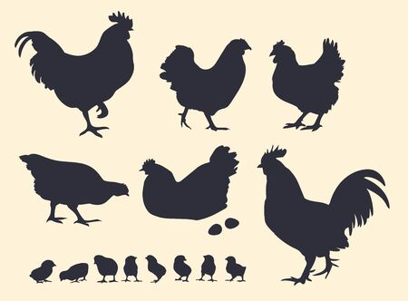Dark vector silhouettes of poultry. Roosters, hens and chickens.