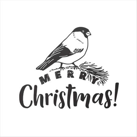 Merry Christmas vector lettering and bullfinch illustration. Holiday hand drawn black calligraphy for your design. White background. Stock Illustratie
