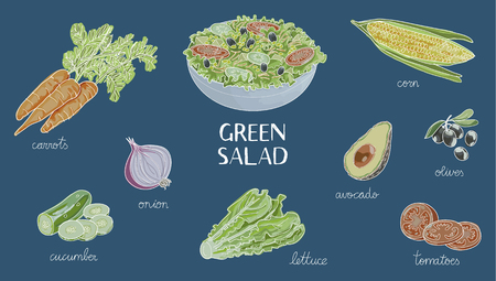 Illustration of hand drawn green salad ingredients: bowl of salad, tomato, onion, cucumber, lettuce, corn, olives, carrot, white line on blue background