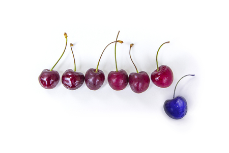 Red cherries in a row on a white background, one cherry ultra violet, stands out, the other.