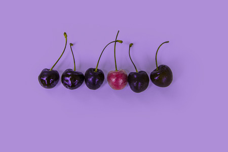 Ripe juicy cherries in a row, one berry of another color, red  violet tones, selection of cherries