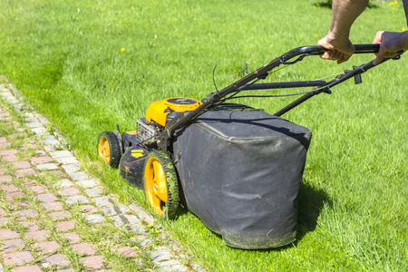 Man mows grass with lawn mower on sunny morning in garden.