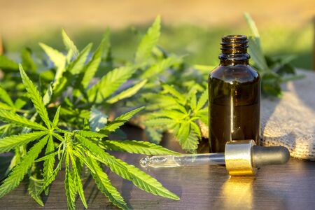 Green branch cannabis with five fingers leaves and pipette dropper with drop near glass bottle with natural hemp oil on brown wood background, , marijuana for legalization medical hemp 写真素材