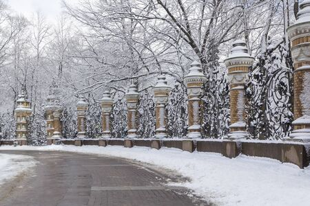 Decorative fence of cast-iron forged in Mikhailovsky Garden in winter, St. Petersburg, Russia