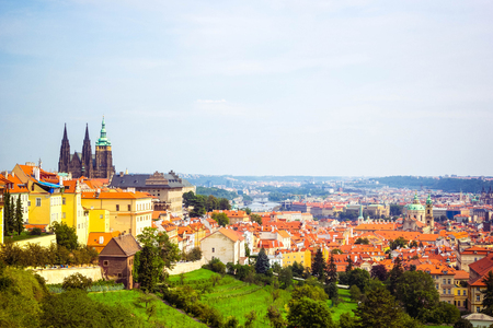 Panoramic view of Prague (Prague Castle, St. Vitus Cathedral) from Petrin hill.  Beautiful summer landscape with blooming gardens, Prague, Czech Republic