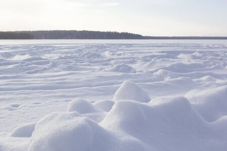 Panoramic view of winter landscape with field of white snow and forest on horizon on sunny frosty day.
