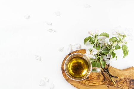 Glass cup of hot green tea with flowering apple tree branch on wooden stand on white background. Top view, flat lay, copy space