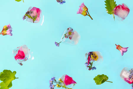 Flying ice cubes with fresh flowers on blue pastel table. Fresh bright summer background.