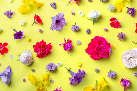 Floral pattern background. Colorful spring summer mix flowers on yellow background. Flat lay, top view.
