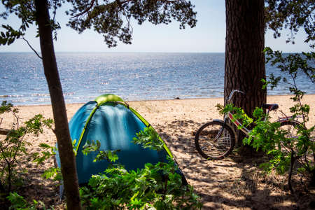 Camping, tent and bicycle on beach sea under the pine forest on shore of Gulf of Finland, St. Petersburg, Russia. Concept of outdoor activities, healthy lifestyle