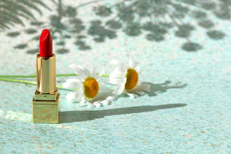 Red lipstick with chamomile flowers on light background of nature with fern leaves. Decorative beauty cosmetic product for woman with place for text