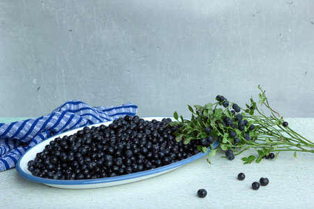 Forest blueberries in plate and blueberry branch with ripe berries on light table Stock fotó