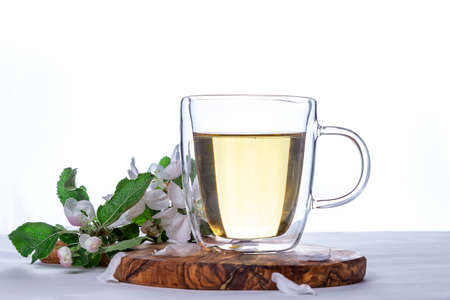 Glass cup of hot green tea with flowering apple tree branch on wooden stand on white background