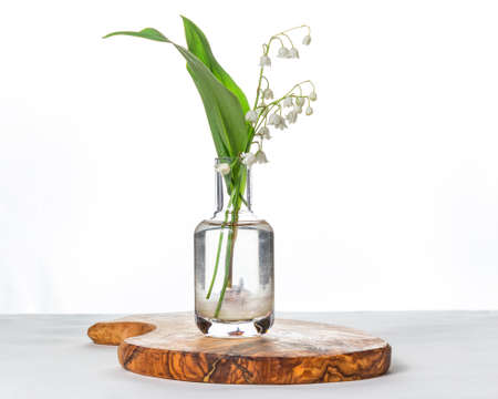 Fresh branch of blooming lily of valley flowers in transparent glass vase isolated on table on white background Stock fotó