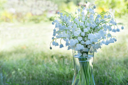 Fresh bouquet of blooming lily of valley flowers in transparent glass vase on natural blurry background. Beautiful soft atmospheric landscape in pastel light colors. 版權商用圖片