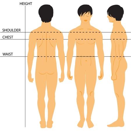 Таблица размеров для Мужская одежда Фото со стока