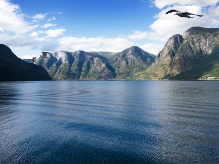 Sogne fjord in the north of Norway. photo