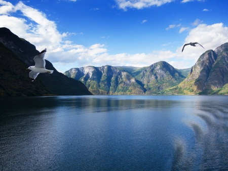 Sogne fjord in the north of Norway photo