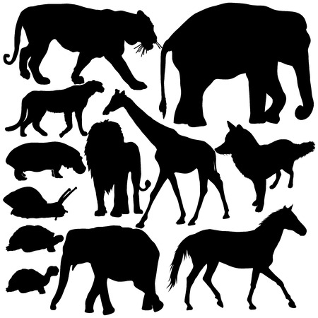 Set with silhouettes of animals