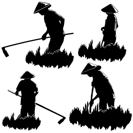 harvesting rice: Silhouettes of asian peasants on white background Illustration